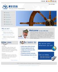 MEESA web layout-attempt no.1