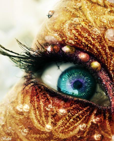 The Golden Fairy s Eye