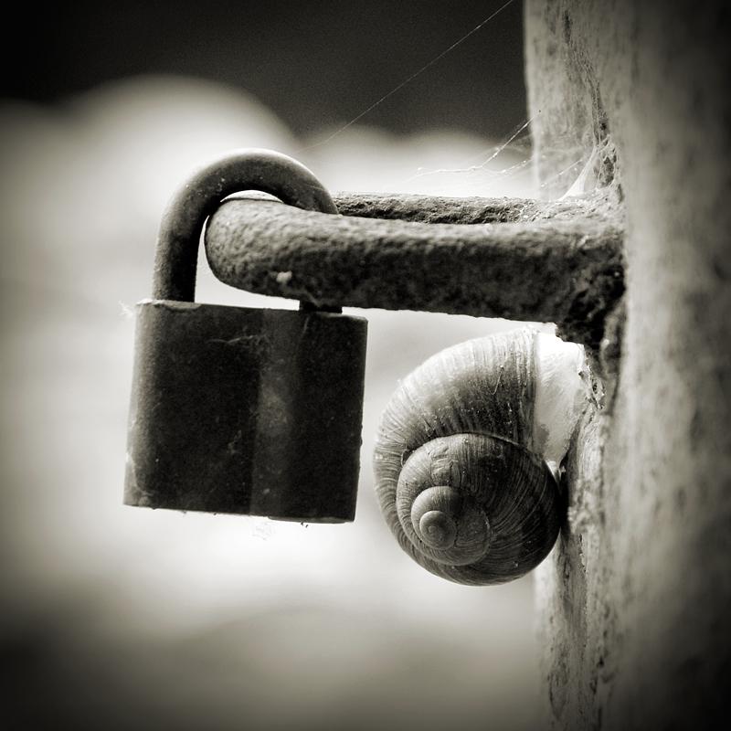double lock by anjelicek