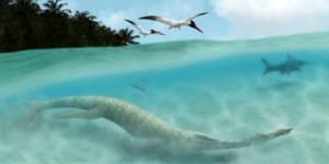 Swift Predators by PrimevalRaptor