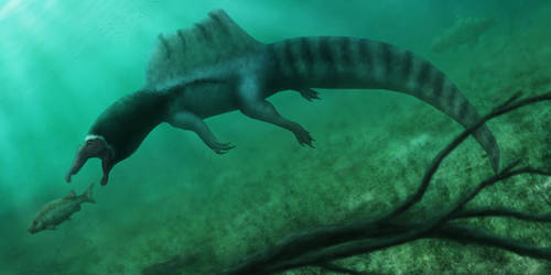 The true River Monster