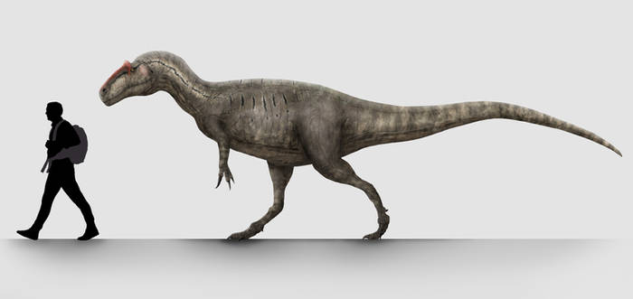 Walking with Dinosaur(s)