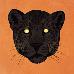 Jaguar head color test