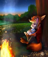 Campfire by senestran