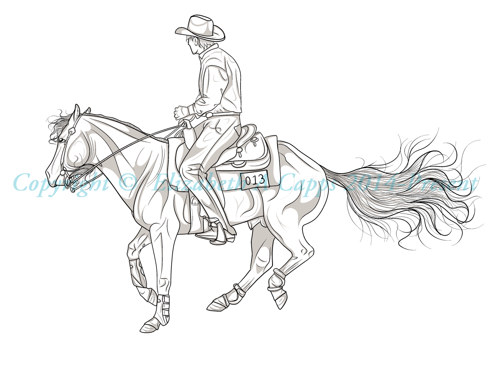Line Drawing No Shading : Reining lines shading by flamestorm on deviantart