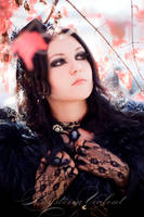 soft by mysteria-violent