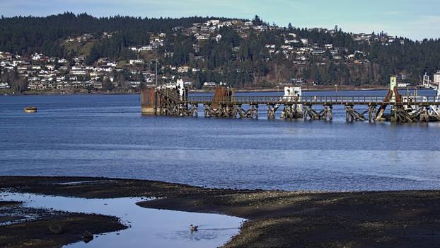 Nanaimo Ferry Dock