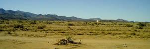 Desertscape by vashsunglasses