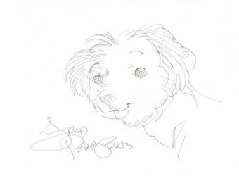Cora Puppy by MaggieMun