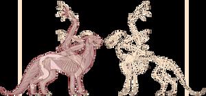 Peakwings - muscular/skeletal system