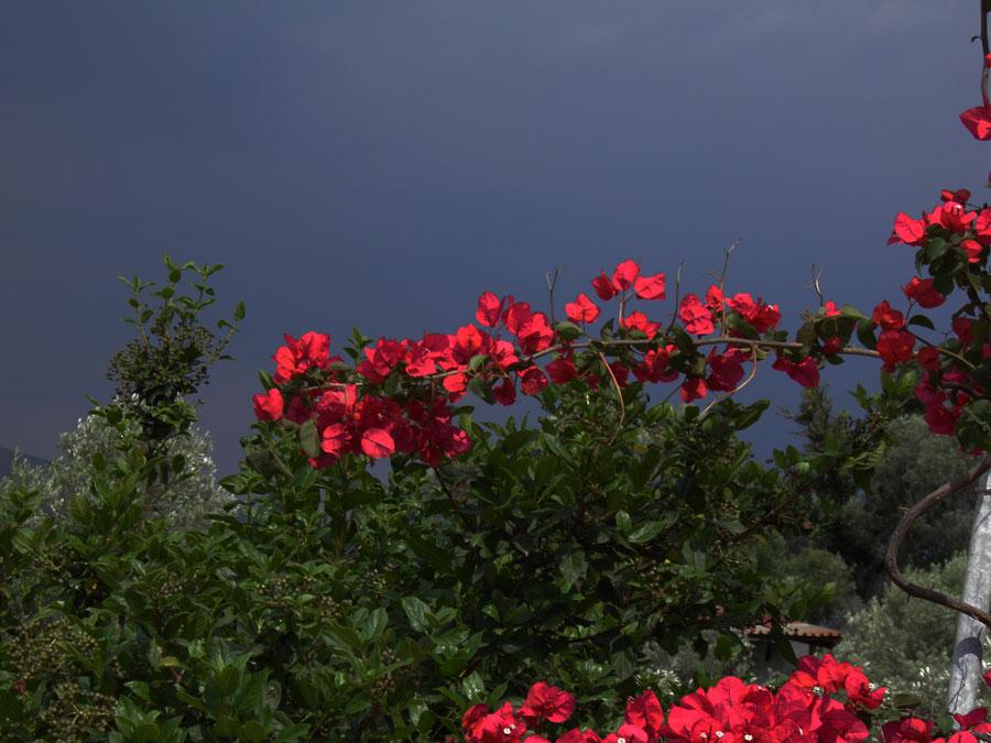 Dark sky over Samos by JanuaryGuest