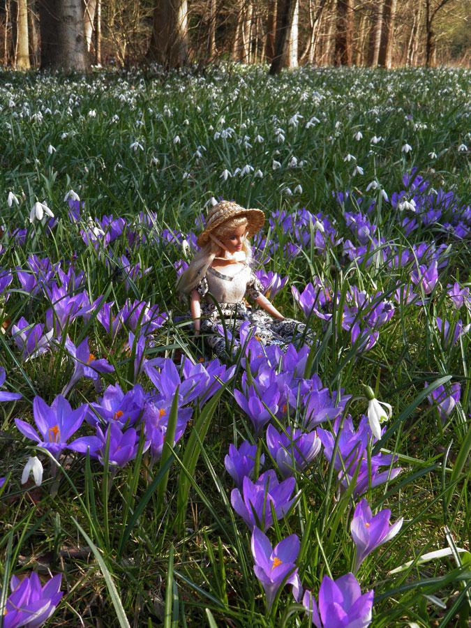 Spring in Wonderland by JanuaryGuest