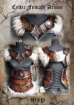Celtic Female Armor set - WIP
