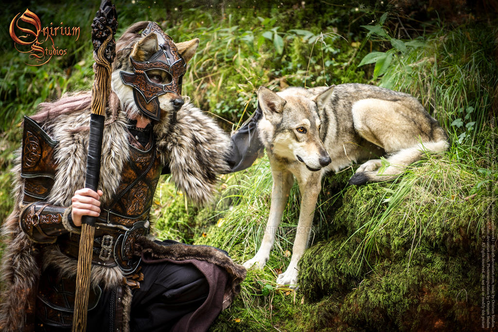 Photoshoot 2015 : Celtic Wolf warrior 2 by Deakath