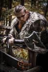 Viking inspired - Calimacil partnership 2
