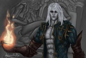 Alucard - The chaos power. . . by mayonakakisu