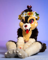 PFC 2018 Morsel by lizspit
