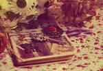 Dear Diary.. by ShadowinLight