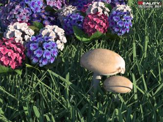 Mushroom by cridgit
