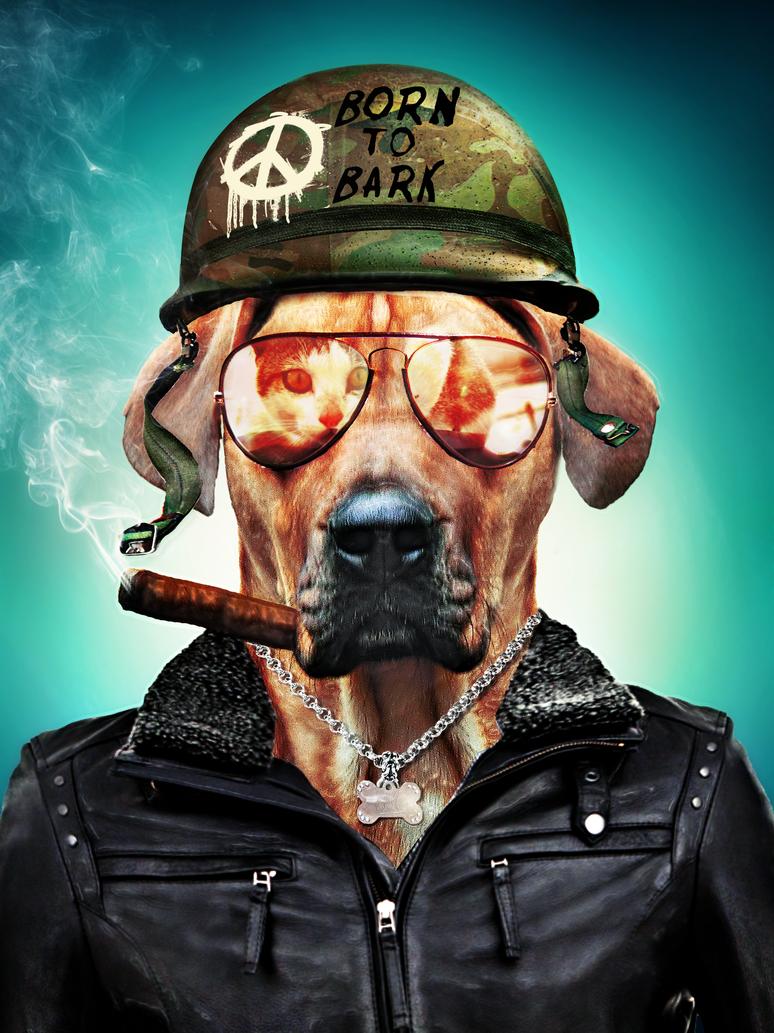 Born to Bark by Nicoezm