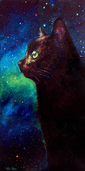 Galaxy Cat II