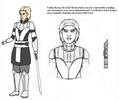 Star Wars: Clone Wars The Exile, Meetra Surik