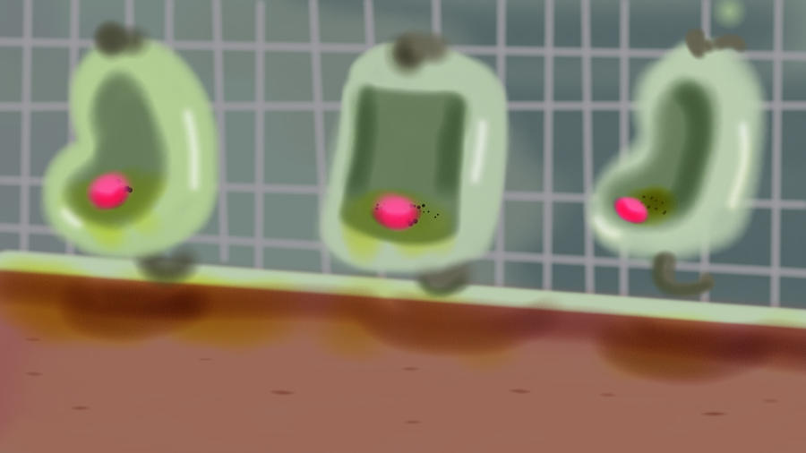 Urinals by Makinita