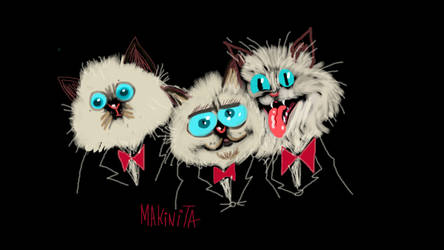Puss band