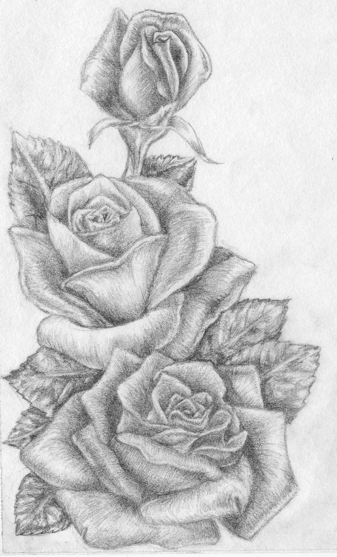 Картинки карандашом прикольные цветы, картинки