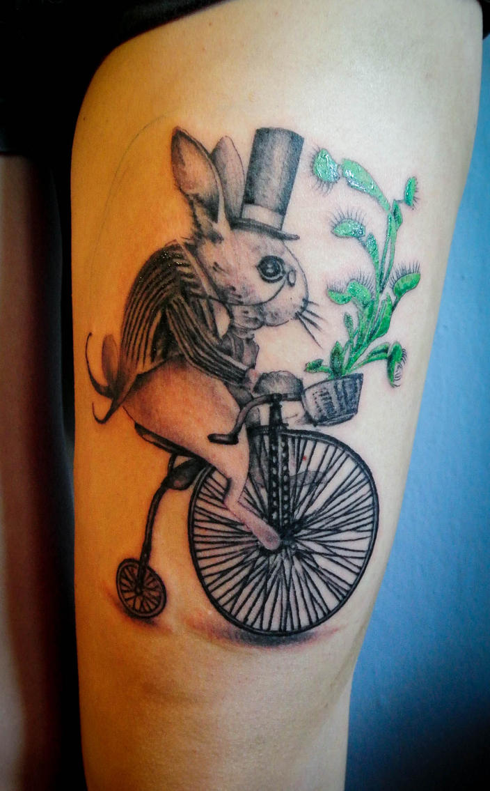 White rabbit by Dimed-roll