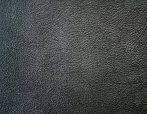 AVATAR Movie Leather Texture