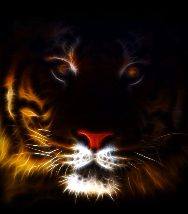 tiger fractal cats e - photo #10