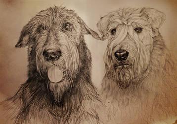 Dogs by coffeecookiecat