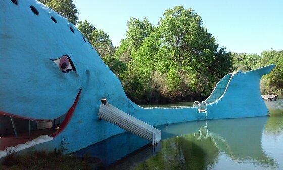 Blue Whale by LitlMomma