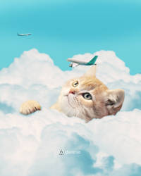 Cute Cat Playing with Planes by arizrab