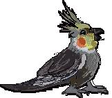 Oooooohhhh by FlyingGuardianFish