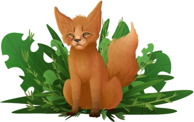Foxpaw by Maplesaurian