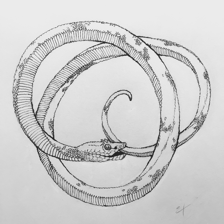 Ouroboros by McDuffy