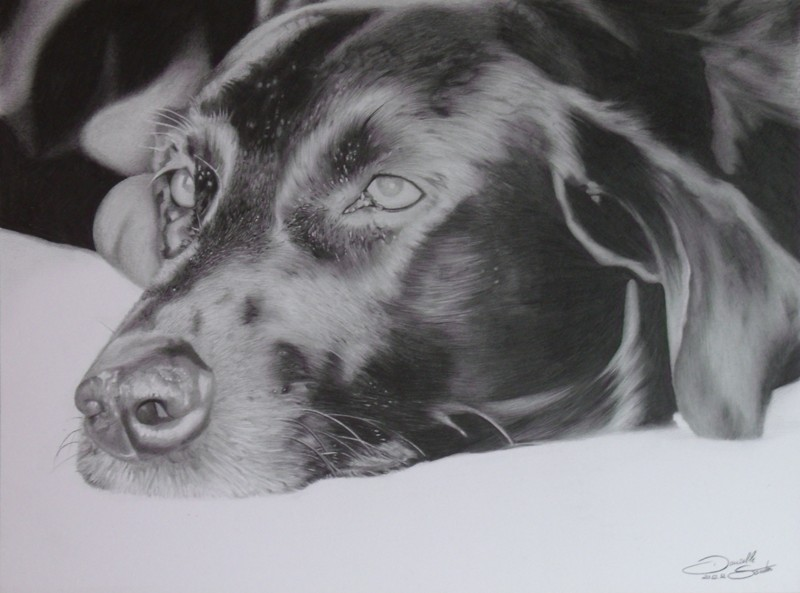 Dog Rick by DaniiSantos