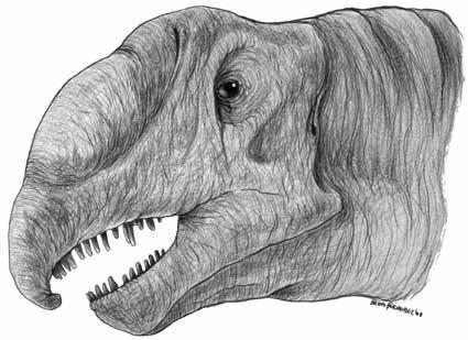 Brachiosaurus with trunk by Christoferson