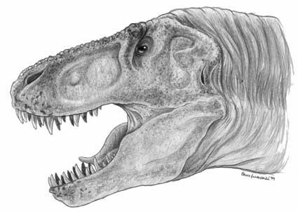 Tyrannosaurus head by Christoferson