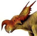 Einiosaurus head