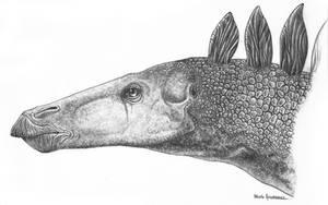 Stegosaurus stenops by Christoferson