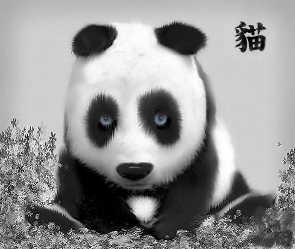 Pretty Panda by Greenize