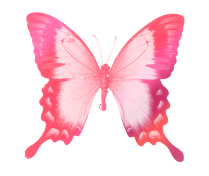 Pink Butterfly Drawing by Aira-Maeda on DeviantArt