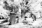 Ballymore Eustace Cemetery
