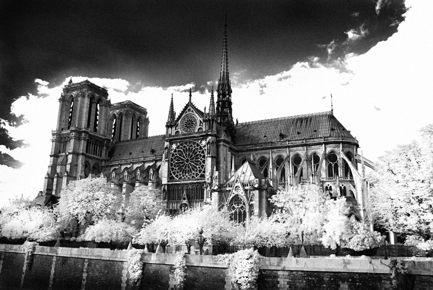 Notre Dame Cathederal by seancoetzer