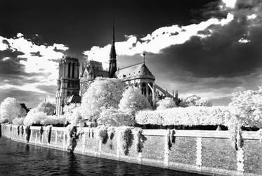 Notre Dame by seancoetzer