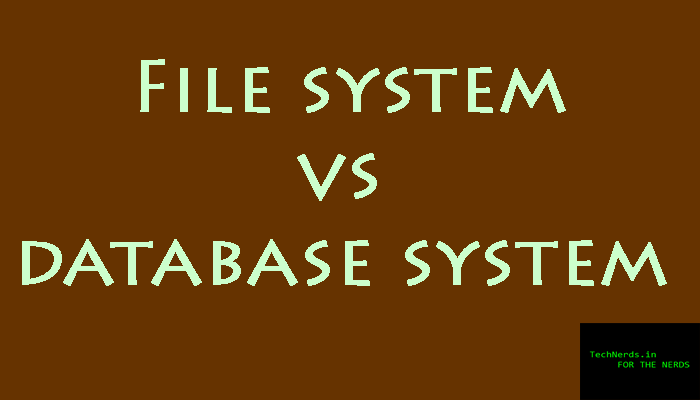 file system vs database system