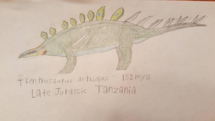 (Colored) Kentrosaurus aethiopus: For Evodolka